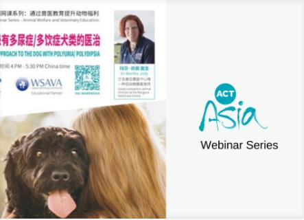 El socio educativo de WSAVA, ACTAsia, enarbola la bandera del bienestar animal en China